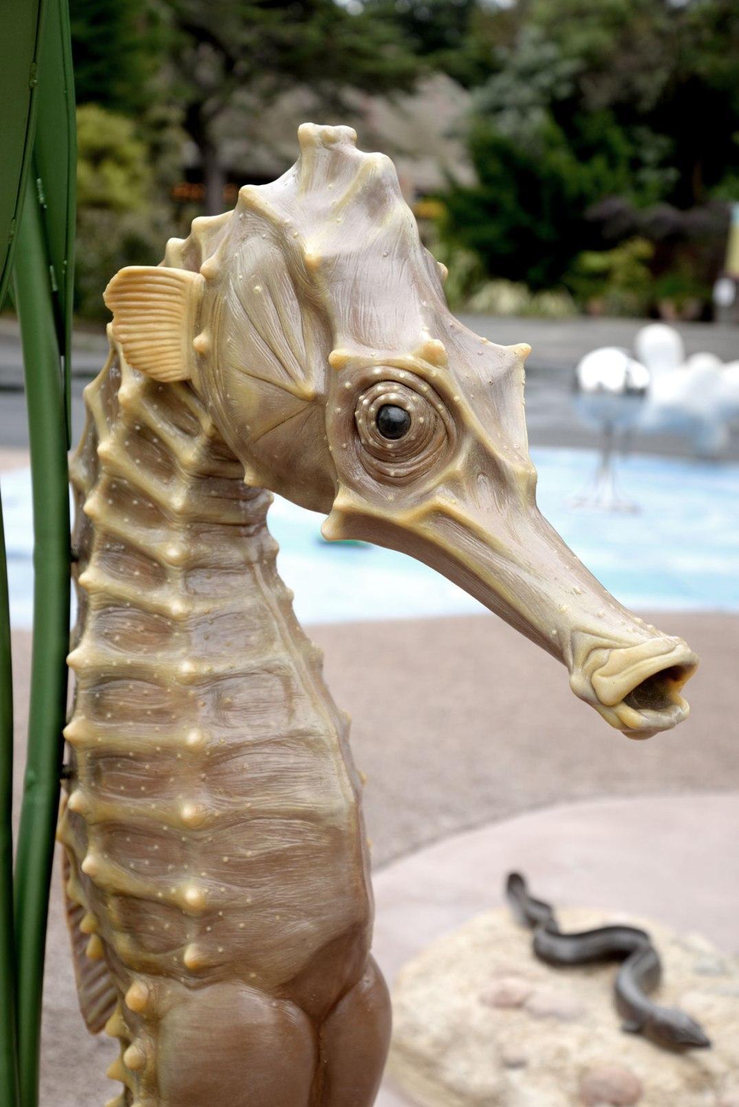 San_Francisco_Zoo_Seahorse_Sculpture_002